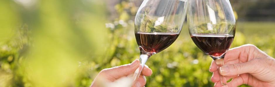 viticulteur, viticulteurs, viticulteur beaujolais, beaujolais, domaine, domaine de la merlette, beaujolais villages, cru beaujolais, vin sur internet, tachon, vente de vin, aoc, vins, cépage, oenotourisme, gamay, côte de brouilly, vin, vins rouge, crus, beaujolais blanc, beaujolais nouveau, villages, rosés, côte, vignoble, crus du beaujolais, terroirs, été, arômes, blanc,  appellation, vin de garde, beaujolais rosé, beaujolais nouveau, bouteille, producteur, domaine merlette, merlette, bourgogne